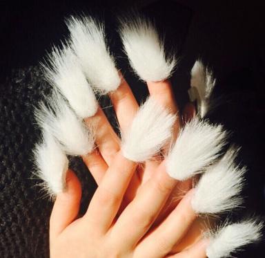 fur-nails__700